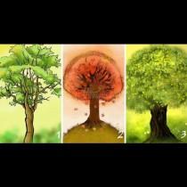 Избери най-красивото дърво и ще узнаеш тайната на своята сексуалност и привлекателност:
