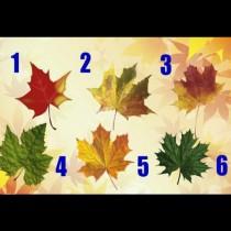 Изберете есенно листо и разберете какво ви съветва Съдбата: