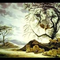 Този тест за зрението помага да определите истинската си психологическа възраст-Ако виждате 1-4 лъва, 4 до 6 лъва