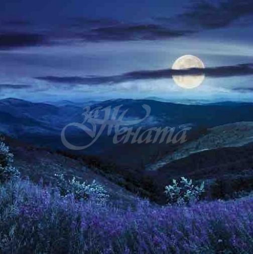 Мощна Синя луна на 31 октомври ще повлияе на дълбоко и интензивно ниво! 4 зодии ги очакват нови върхове и финансово благополучие!