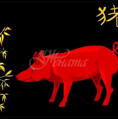 Ноември 2020 г. е месецът на Огненото прасе. Какво очаква зодиите на китайския хороскоп?