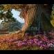 Хороскоп за днес 30 октомври-Телец-Носител на добра новина, Лъв важни събития