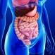 Kак доброто храносмилане влияе на нашия имунитет?