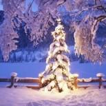 Дневен хороскоп за 1 декември- Риби-Ще се проявите като истински герои, Дева ще се справите с невъзможното