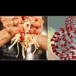 Този уникален продукт смазва коронавируса в зародиш - добре че и у нас го има!