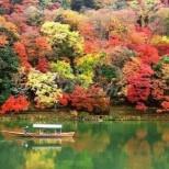 Дневен хороскоп за петък, 20 ноември-Овен-Очаквайте неочакваното, Лъв-Интересен ден