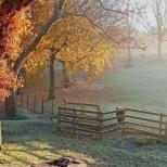 Дневен хороскоп за 22 ноември-Козирог прекрасен ден, Везни-Одобрение от близките
