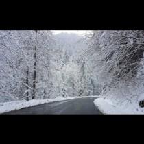 Първият сняг заваля! Ето къде натрупа най-сериозно (Видео):