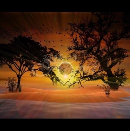 30 ноември-14 декември: между две затъмнения щастие и късмет за 3 знака на зодиака
