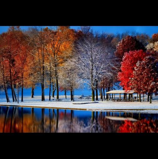 Хороскоп за днес, 21 ноември: РАК - положителна промяна; СКОРПИОН - сменете посоката; СТРЕЛЕЦ - важно решение
