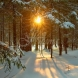 Хороскоп за утре 2 декември-РИБИ  Успешна реализация, СКОРПИОН Силен късмет и стабилизация