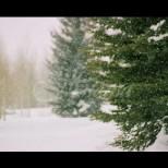 Хороскоп за утре 3 декември-ВЕЗНИ Печалби, СТРЕЛЕЦ Успех и много напрежение