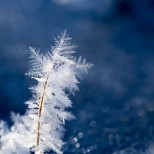 Хороскоп за утре 21 януари-СКОРПИОН Сигурен успех, РАК Печеливш шанс
