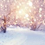 ХОРОСКОП от 4 до 10 януари: РАК, промени към по-добро! ВЕЗНИ, отварят всички финансови врати! ВОДОЛЕЙ, изпълнение на плановете!