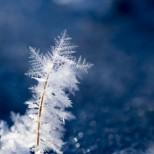 Хороскоп за утре 18 януари-СТРЕЛЕЦ Успешни контакти, ДЕВА Чудесен шанс за успех