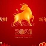 Китайски хороскоп за 2021-Петел-Успешна година, много ползотворна за Бивол