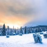 Хороскоп за утре 12 януари-СКОРПИОН Добри възможности, ВЕЗНИ Пред чудесен старт