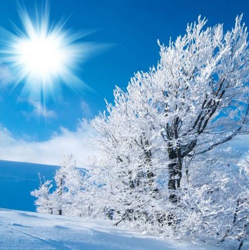 Хороскоп за днес, 7 януари-Рак-ще се къпете в любов и обожание, Везни - Изненадващи новини