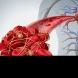 Храните, които прочистват запушени артерии и разреждат кръвта по-добре от хапчета и без странични ефекти!