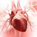 Как да проверим сами здравето и силата на сърцето си за няма и 5 минути: