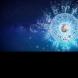 Хороскоп за февруари 2021 г.: ТЕЛЕЦ, период с най-мощната енергия! РАК, това е времето на магията! ВОДОЛЕЙ,  реализиране на мечтите!