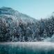 Хороскоп за днес 17 януари-Везни-Приятни изненади, Козирог-Поздравления и подаръци