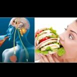 Как да излъжем хормона на глада, който ни кара да се тъпчем и дебелеем - 10 малки хитрости: