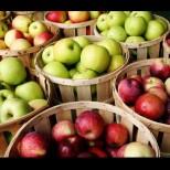 Кой цвят ябълка при какви болести помага: