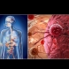 Всеки от нас носи ракови клетки в тялото си - ето как да им попречим да се изродят и да ни убият: