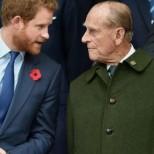 Хари се въща по спешност в Англия, за да си вземе последно сбогом с дядо си