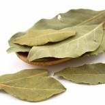 5 необичайни свойства на дафиновия лист-Защита от зли очи, ако искате да се върнете някъде, където ви е харесало