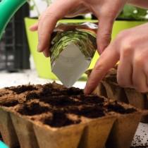 Колко семена трябва да засадите, за да не изхвърлите разсада по-късно
