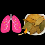 Вземи 5 дафинови листа при кашлица, бронхит или грип, и няма да стигаш до антибиотик: