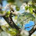 Хороскоп за утре 22 април-ТЕЛЕЦ Успешна реализация, РАК Чудесни възможности