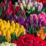 Всички имена, които празнуват на Цветница