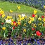 Седмичен хороскоп за периода от 12 до 18 април-ДЕВА Начало на хубав етап, ЛЪВ Добри постижения