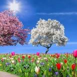 Хороскоп за днес 16 април-Щастие за Овен, дилема за Телец, висока оценка за Водолей