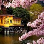 Хороскоп за днес 5 май-Водолей-Положителни мисли, Риби-Нещата ви се получават от раз, дори невъзможните