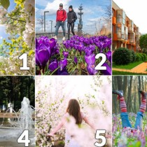 Разберете какво ви очаква през май по снимките, които избирате