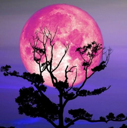 Мощно Пълнолуние на 27 април: най-силно ще повлияе на неподвижните знаци Телец, Скорпион, Водолей и Лъв