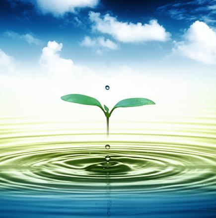 Как сами да си приготвим жива вода вкъщи