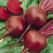 Осем проблема, които червеното цвекло лекува