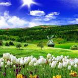 Хороскоп за утре 8 май-РИБИ Сполучлив ден, КОЗИРОГ Благодатен ден