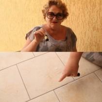Как да изгоним мравките от дома си, преди те да изгонят нас