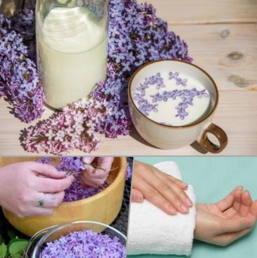 Люляково мляко - убиецът на болката! Балсам за екземи, псориазис, артрит - елементарно се прави: