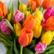Хороскоп за утре 13 май-РИБИ Чудесни възможности, ВОДОЛЕЙ Благодатен ден