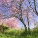 Хороскоп за утре 10 май-РАК Нерви и силен късмет, РИБИ Добри възможности