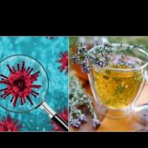 Тези билки и лечебни треви са МОЩЕН ЩИТ срещу коронавируса: