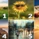 Избери лятна картинка и виж как ще намериш щастието си през ЮЛИ: