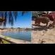 Туристи събраха очите на морето - доведоха на плажа прасенце на каишка. Вижте малкия сладур (Снимки):